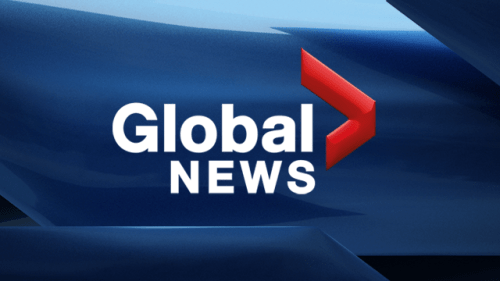 CBFY's CEO on Global News for the Multicultural Fair
